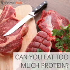 Can You Eat Too Much Protein #primal #paleo #protein #health