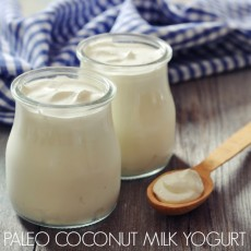 Paleo Coconut Milk Yogurt #paleo #coconut #coconutmilk #dairyfree #yogurt