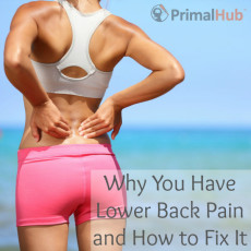 Why You Have Lower Back Pain and How to Fix It (VIDEO) - Primal Hub