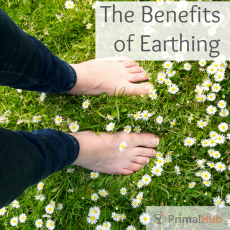 Learn the benefits of earthing and how simple it is to reconnect to the earth.
