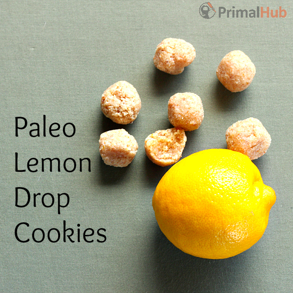 These paleo lemon drop cookies are made with almonds, coconut, lemon and honey. Deliciously tangy and sweet!