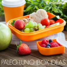 Paleo Lunchbox Ideas #paleo #lunchbox #glutenfree #grainfree #healthy #schoollunch